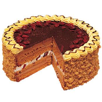 欧式蛋糕/经典蔓越莓