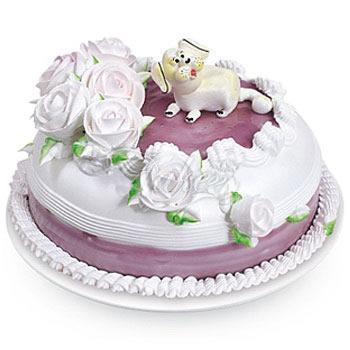 生日蛋糕/寻梦园