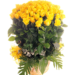 51枝黃玫瑰/愛你的感覺