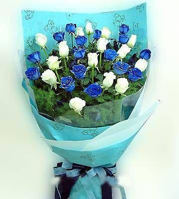 16枝蓝色妖姬/酷美人