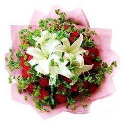 22枝红玫瑰/美丽的希望