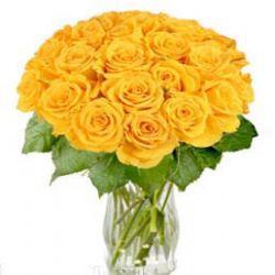 22枝黄玫瑰/对不起