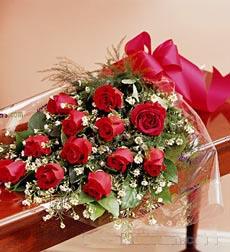 12枝红玫瑰/娇媚