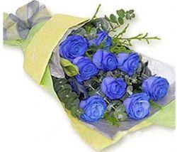 9枝蓝玫瑰/情不自禁: 9枝昆明蓝色玫瑰、绿叶配衬;