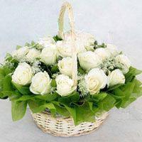 18枝白玫瑰/幸福快乐
