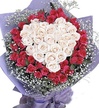 40枝�t玫瑰/�鄣钠��