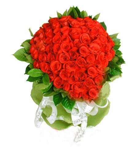 99枝红玫瑰/想你了
