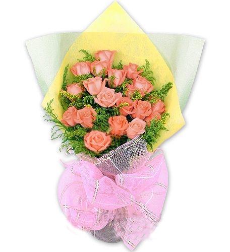 19枝粉玫瑰/亲情问候