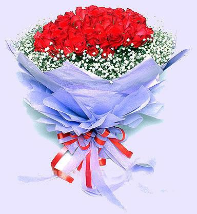 99枝红玫瑰/情深似海