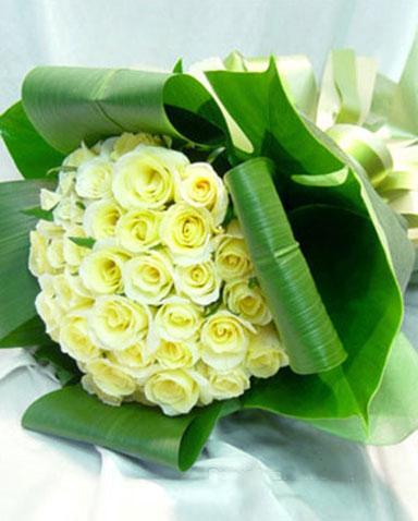 33枝白玫瑰/�廴�