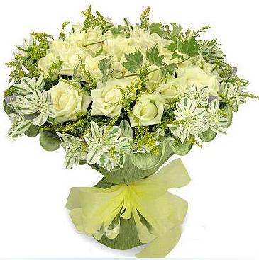 33枝白玫瑰/清�女人香: 33枝白玫瑰,�~上花、�S�L�S�M搭配.