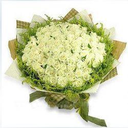 101枝白玫瑰/白色年华