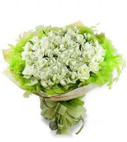 50枝白玫瑰/清�佳人