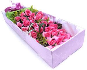 33枝粉玫瑰/甜蜜蜜: 33支精品玫瑰,配叶适量;
