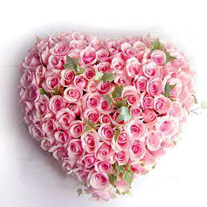 99枝粉玫瑰/我的心: 99枝粉玫瑰花,配绿叶;
