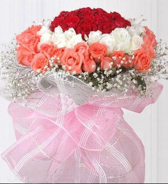 红白粉玫瑰/梦中情人