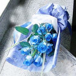 9枝藍色妖姬/一生愛你