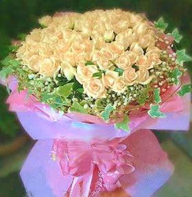 99枝香��玫瑰/迷�倌�