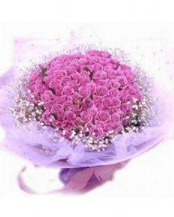 99枝紫玫瑰/驿动心炬