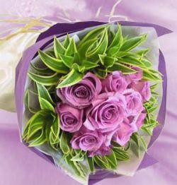 11枝紫玫瑰/一��情