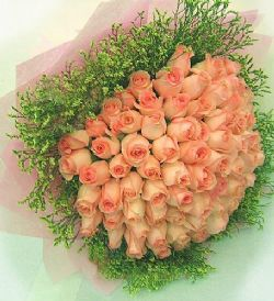 66枝粉玫瑰/情意绵绵