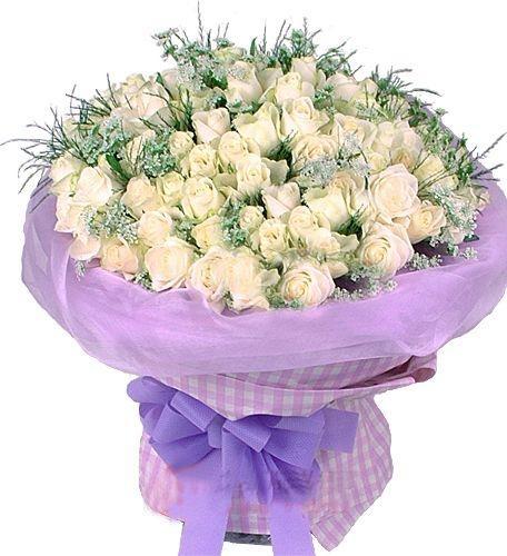 99枝白玫瑰/浪漫傳說