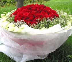 99枝紅玫瑰/愛你到永遠