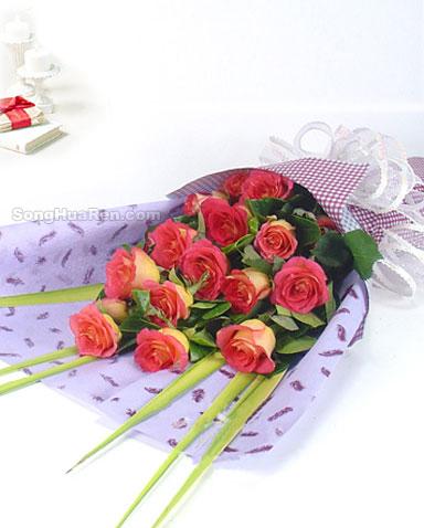 13枝彩玫瑰/伊人梦