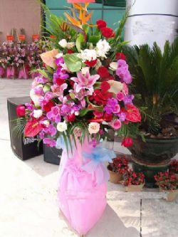 開業花籃/粉色年華: 天堂鳥、蝴蝶蘭,紅掌,百合,紅玫瑰,太陽花,單層開業花籃