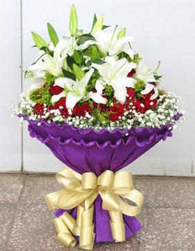 33枝红玫瑰/紫浪漫
