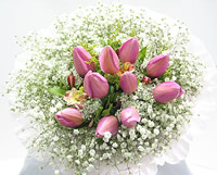 羞涩的爱: 10枝粉色(或者红色)郁金香,苍兰和加拿大黄莺间插,满天星丰满周围点缀。只在12月20日~4月10日期间提供此款鲜花的配送,并请尽量提前三天订购。