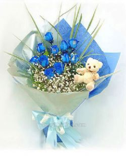 11枝蓝色妖姬/心思: 11枝蓝色妖姬,马莲叶、满天星点缀,另赠10MD小玩偶一只