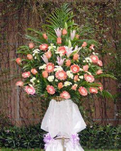 开业花篮/蒸蒸日上: 香水百合,玫瑰,小菊花,散尾葵、绿叶等;