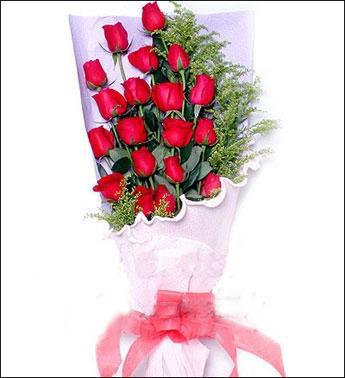 19枝红玫瑰/红红火火