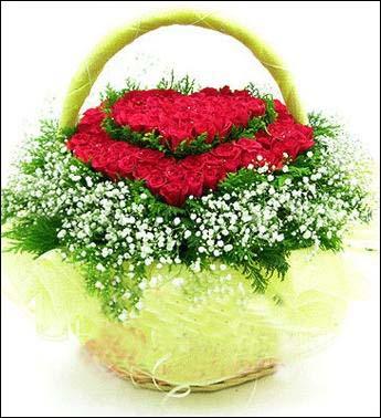 99枝红色玫瑰/ 相约九九