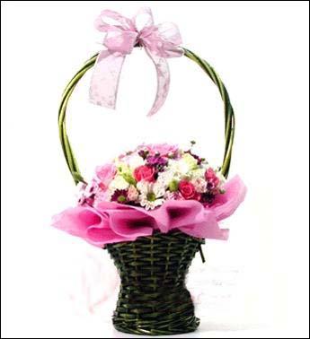12枝粉玫瑰/简单爱