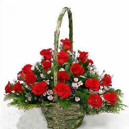 18枝红色玫瑰/衷心祝福