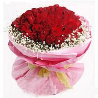 99枝红玫瑰/情有独钟: 99枝红玫瑰,满天星四周环绕。