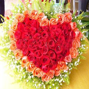 55枝玫瑰/寵愛你