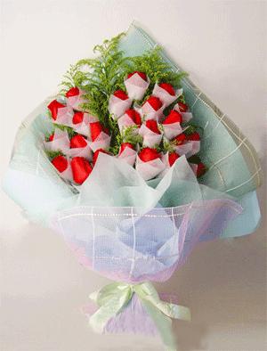 24枝红玫瑰/守护恋情