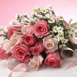 12枝玫瑰/花香月圆: 6枝红玫瑰、6枝粉玫瑰,配白色孔雀草