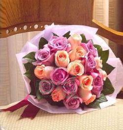 20枝玫瑰/温顺的爱
