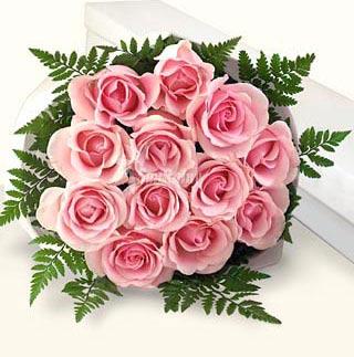 12枝粉玫瑰/快乐每一天