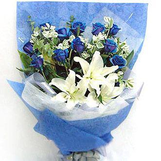 11枝藍玫瑰/夢想
