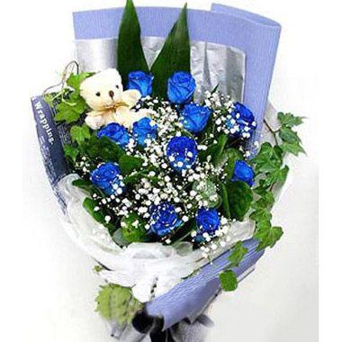 11枝蓝玫瑰/love you !baby: 11枝蓝玫瑰,满天星丰满,背垫金心巴西铁叶,长春藤围绕,可爱的白色小熊