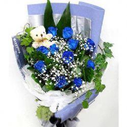 11枝藍玫瑰/love you !baby