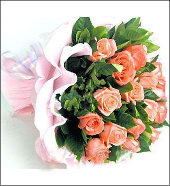 19枝粉色玫瑰/香吻