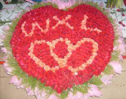 999支超级红玫瑰