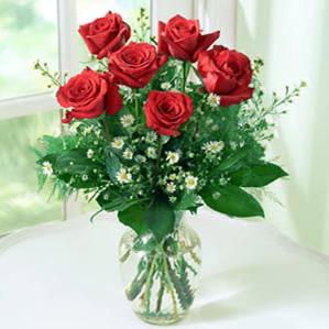 6枝紅玫瑰/真實的愛