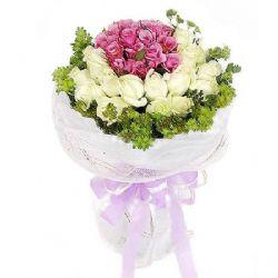 38枝玫瑰/紫精灵的约会